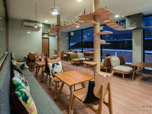 CAT UP CAFE I